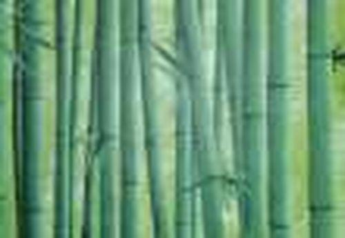 09-1А Пленка с/к  0,45x8 м (бамбук зеленый) D&B