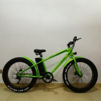 Электровелосипед PIONEER Cruiser Green