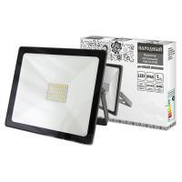 Прожектор светодиодный СДО-04-030Н 30 Вт, 4000 К, IP65, серый, Народный (SQ0336-0282)
