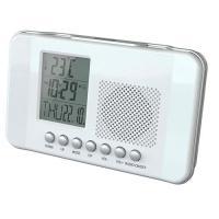 Радиобудильник CR-204 Сигнал
