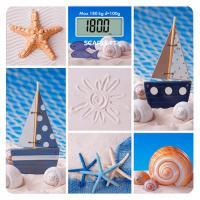 SC-BS33E078 Весы(открытка с моря)